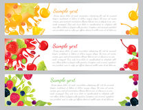 Fruit and berry banners Royalty Free Stock Image