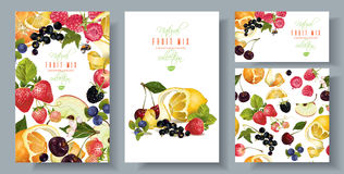 Fruit and berry banners set Stock Images