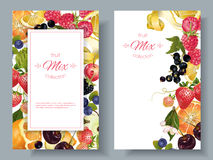 Fruit and berry banners Stock Photography