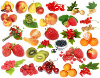 Fruit-berry collection Royalty Free Stock Images