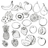 Fruit berry collection. Fruit berry set isolated on a white background stock illustration