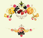 Fruit and berry composition. Vector vintage royal fruit and berry composition.Design for vegeterian menu,tea, ice cream, juice, jam, natural cosmetics, candy and vector illustration