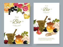 Fruit and berry cosmetic banner Royalty Free Stock Images