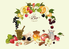 Fruit and berry cosmetic compositoin royalty free illustration