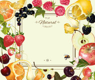 Fruit and berry frame Stock Photos