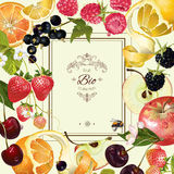 Fruit and berry frame Royalty Free Stock Photos