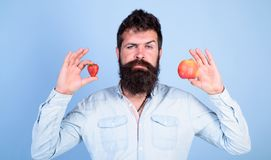 Fruit and berry in hands healthy alternative. Vitamin fruit nutrition concept. Healthcare dieting vitamin. Man bearded. Thoughtful holds apple and strawberry stock photos