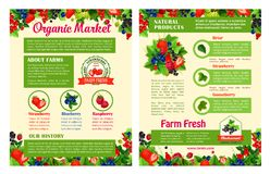 Fruit and berry organic market posters. Fruit and berry organic food market poster templates. Strawberry, blueberry, raspberry, black and red currant, gooseberry stock illustration