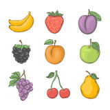 Fruit and berry set. Vector illustration on a white background.Summer fruit icon hand draw in doodle style royalty free illustration