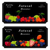 Fruit berry strawberry. Vector illustration logo fruit berry:strawberry cherry raspberry blackberry currant gooseberry wild rose blueberry cranberry Stock Photography