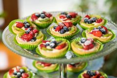 Fruit and berry tarts dessert tray assorted. Closeup of beautiful delicious pastry sweets with fresh natural blackberries and figs. French Bakery catering royalty free stock photos