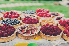 Fruit and berry tarts dessert tray assorted outdoors Stock Image