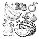 Fruit and berry vector drawing set. Hand drawn summer food. Illustration of banana, strawberry, cherry, blueberry, apricot, fig and pear. Vintage sketch. Farm royalty free illustration