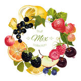 Fruit berry wreath Royalty Free Stock Photo