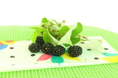 Fruit black berry Royalty Free Stock Photography
