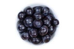 Fruit bleu de fruits de raisins de la cuvette ci-dessus d'isolement sur le blanc images stock