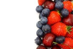 Fruit border isolated on white.  royalty free stock image