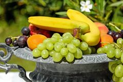 Fruit Bowl, Shell, Fruit, Fruits Stock Photo