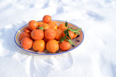 Fruit bowl in the snow Stock Images