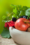 Fruit bowl and vines Royalty Free Stock Photos