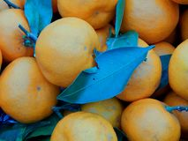 Fruit box with tangerines and green leaves Stock Photo