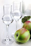 Fruit Brandy, Apple Brandy, Grappa Royalty Free Stock Images