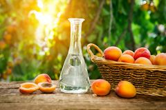 Fruit brandy in a bottle and apricots Stock Photography