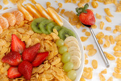 Fruit breakfast. Breakfast - fruit salad with spoon Stock Photography