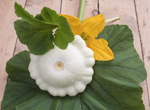 The fruit bush pattypan lying on a green leaf on a wooden table Stock Photos