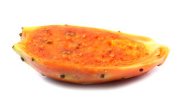Fruit of cactus Stock Images
