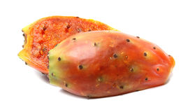 Fruit of cactus Stock Photography