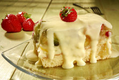 Fruit cake. With vanilla sauce on a plate Stock Images