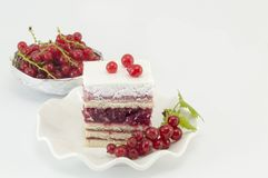 Fruit cake with currant and fresh currant fruit on white Royalty Free Stock Image