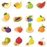 Fruit cake icons set, isometric style. Fruit cake icons set. Isometric set of 16 fruit cake vector icons for web isolated on white background vector illustration