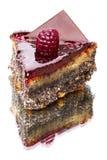 Fruit cake with poppy seeds Royalty Free Stock Photo