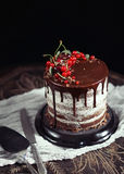 Fruit cake on the table in rustic kitchen; selective focus; vint. Chocolate and fruit cake on the table in dark rustic kitchen Royalty Free Stock Photography
