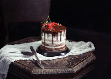 Fruit cake on the table in rustic kitchen; selective focus; vint. Chocolate and fruit cake on the table in dark rustic kitchen Royalty Free Stock Images