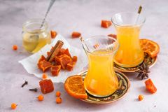 Fruit candies with healthy berries tea in glasses and honey Stock Images