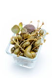 Fruit of the caper on a white background Royalty Free Stock Photography