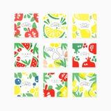 Fruit cards collection original design, posters with apple, pear, citrus, lime, lemon, berry, pomegranate, watermelon Stock Images