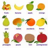 Fruit Cards for learning English royalty free illustration