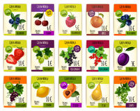 Fruit cards with price for farm market Royalty Free Stock Photos