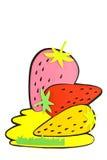 Fruit Of The Cartoon. Stock Photos