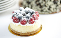 Fruit cheesecake Stock Images