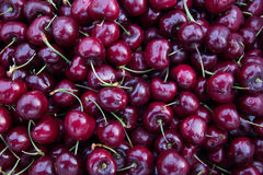 Fruit. Cherry fruit nicely put together Royalty Free Stock Images