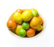 Fruit citrique Image libre de droits