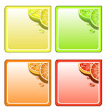 Fruit coaster set. Fruit collage  coaster set Royalty Free Stock Photo