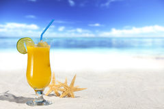Fruit Cocktail on the Beach Royalty Free Stock Images