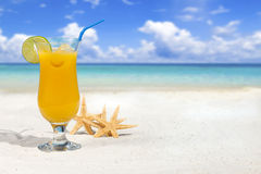 Fruit Cocktail on the Beach Royalty Free Stock Photography