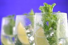Fruit cocktail and mint Royalty Free Stock Image